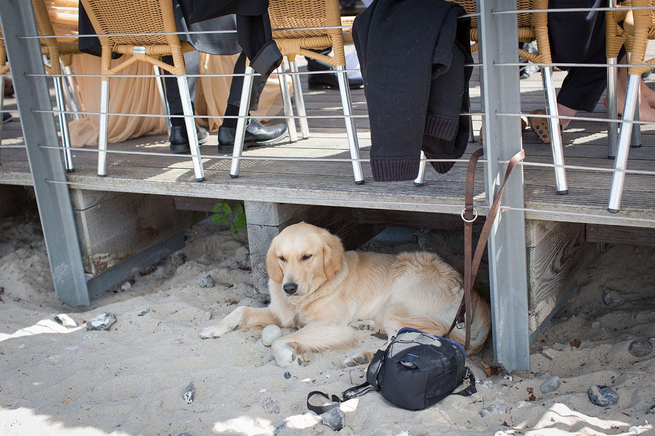 strandhochzeit strandhaus schwedeneck053