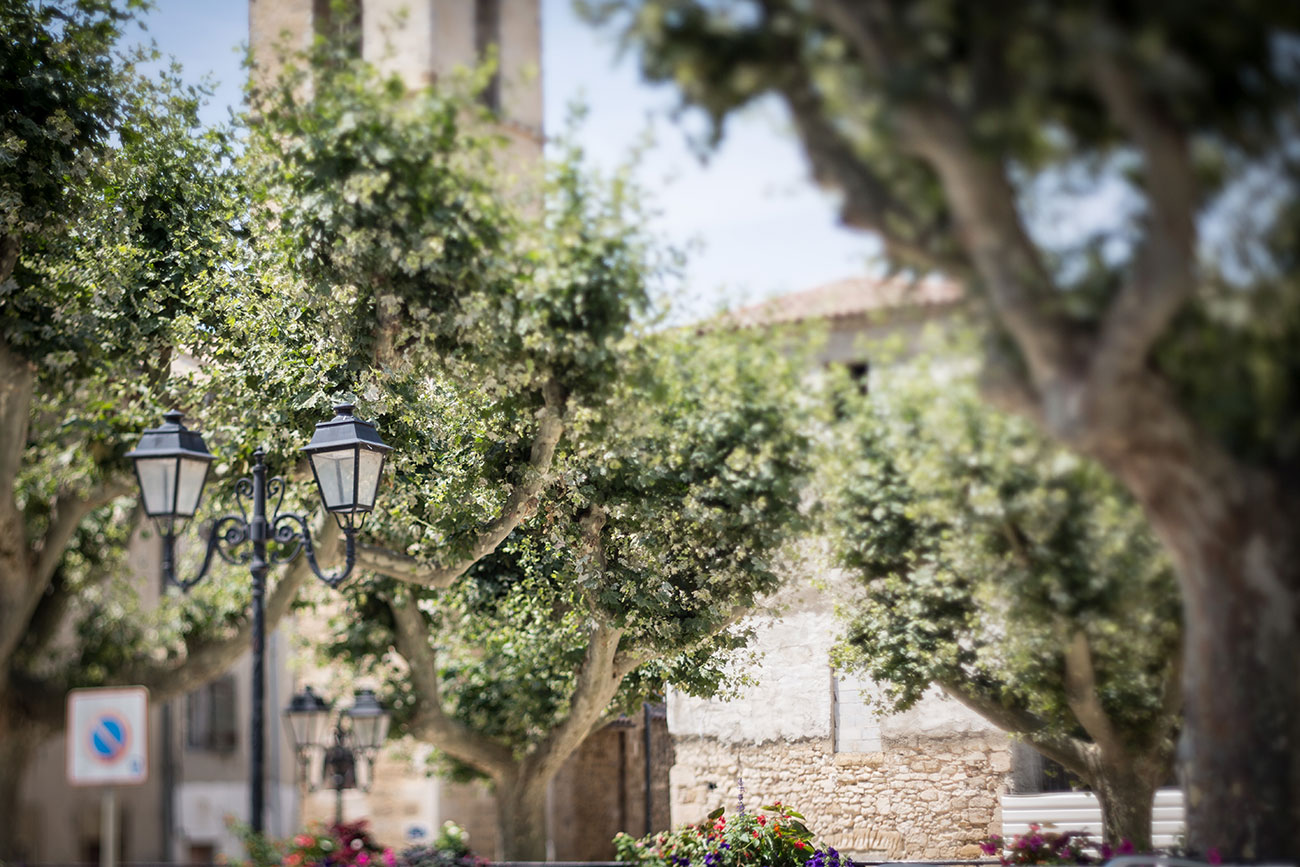 Provence-2016-016-Kopie