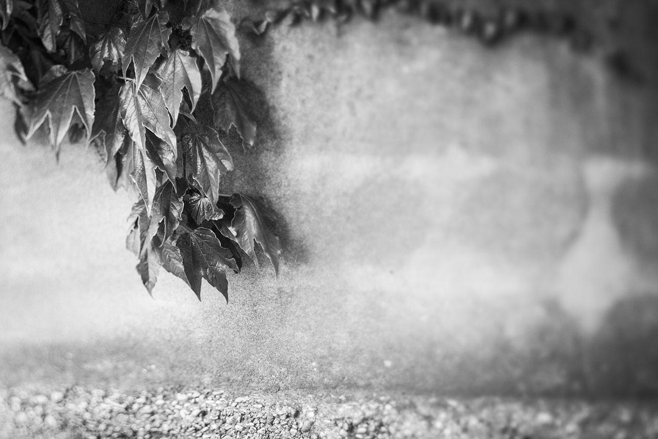 Provence-2016-020-Kopie