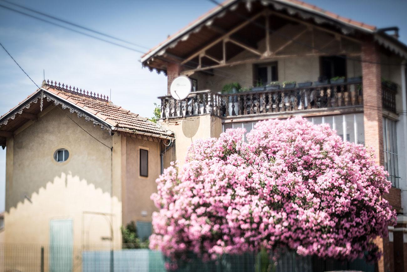 Provence-2016-022-Kopie