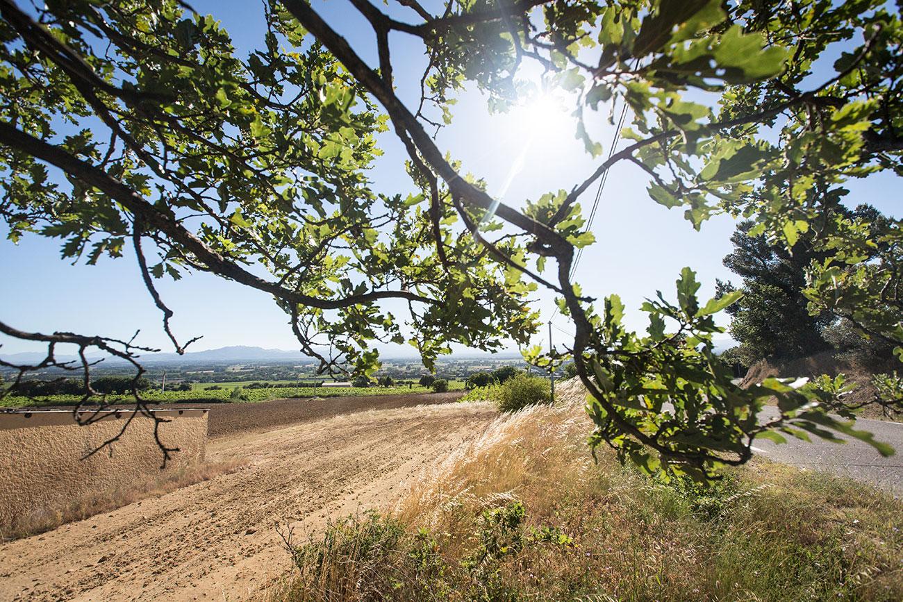 Provence-2016-030-Kopie