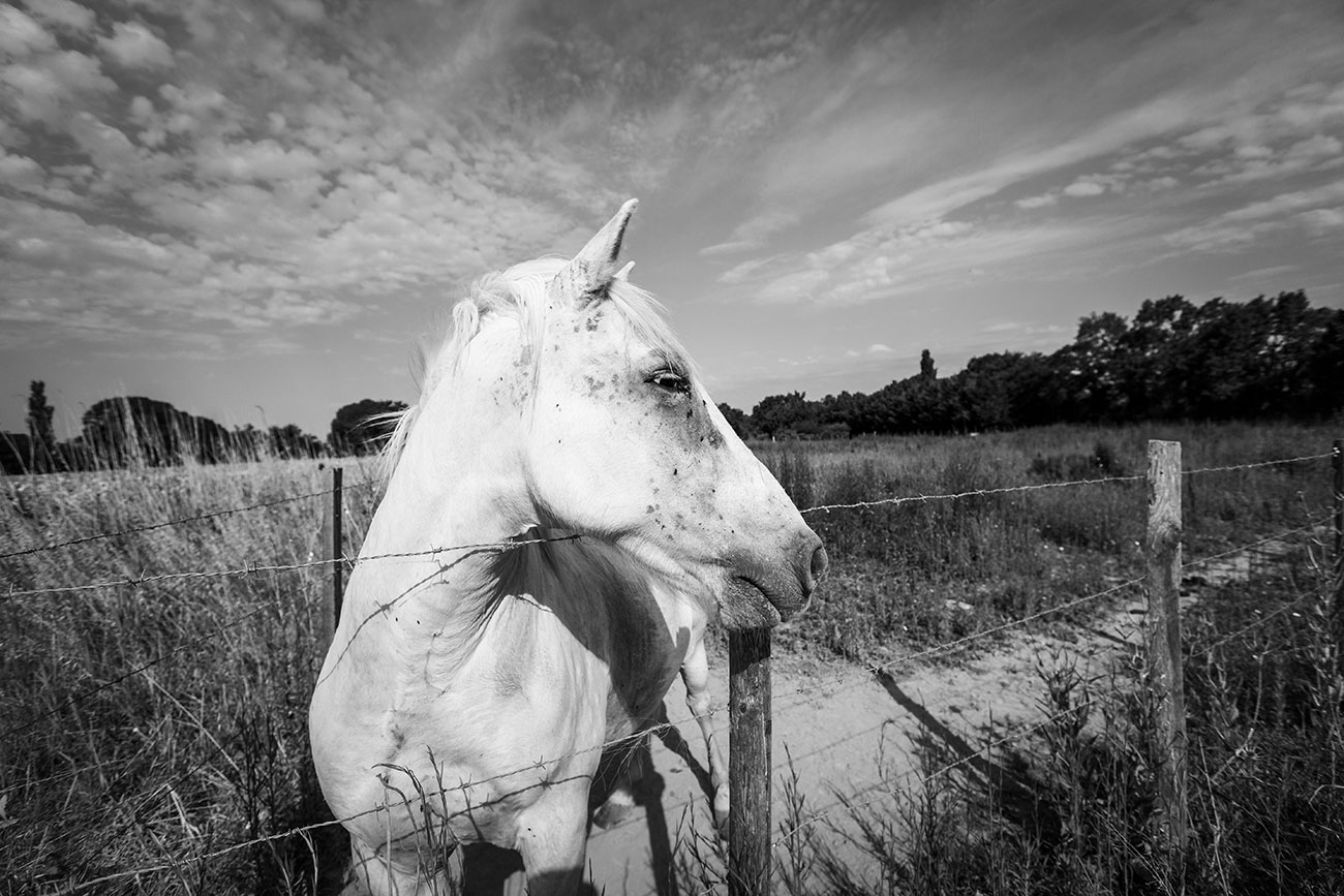 Provence-2016-073-Kopie