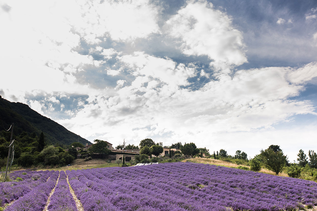Provence-2016-165-Kopie