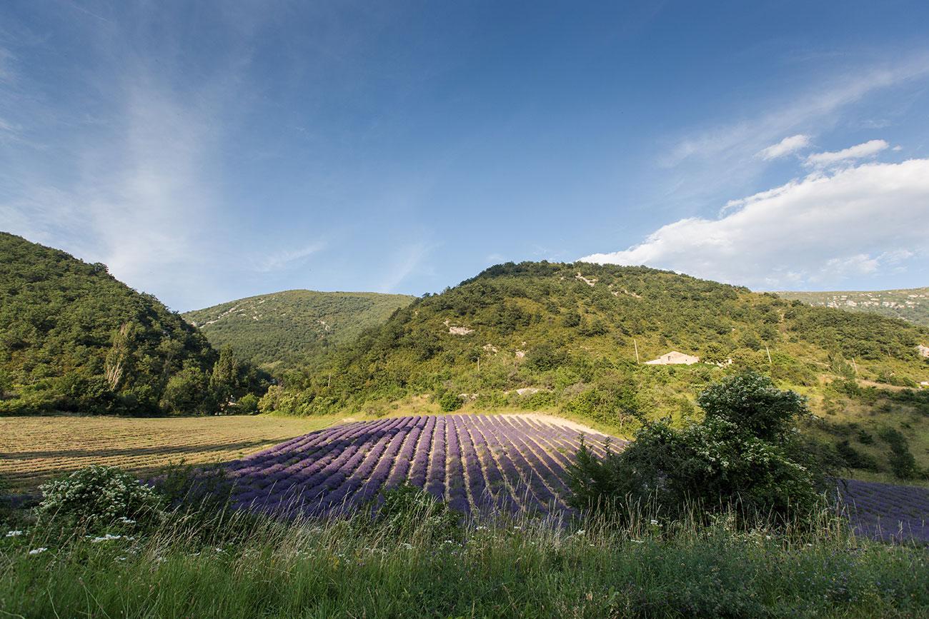 Provence-2016-184-Kopie